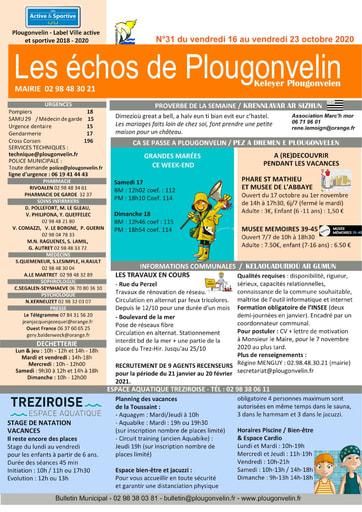 Bulletin 31